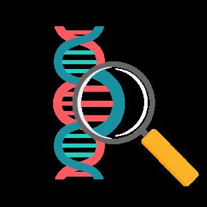 Philosophie/ADN - PH² International